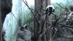 zoo3-2